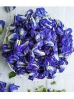 Кому противопоказан синий чай Анчан